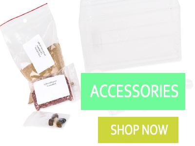Ant Accessories